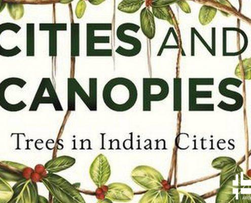 معرفی کتاب شهرها و سایبان ها: درختان در شهرهای هندوستان